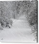 Winter's Trail Acrylic Print