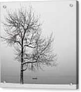 Wintertrees Acrylic Print