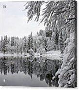 Wintery Reflections Acrylic Print