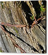 Wired Fence Post Acrylic Print