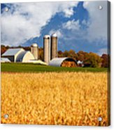 Wisconsin Farm In Fall Acrylic Print