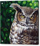 Wisdom Great Horned Owl Acrylic Print