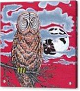 Wise Owl  Acrylic Print