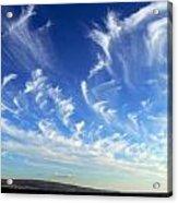 Wispy Clouds  Acrylic Print