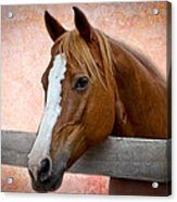 With A Whisper Acrylic Print