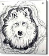 Wolf Totem Acrylic Print