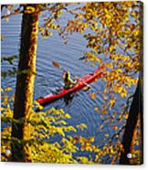 Woman Kayaking With Fall Foliage Acrylic Print