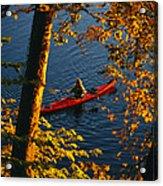 Woman Seakayaking On The Potomac River Acrylic Print by Skip Brown
