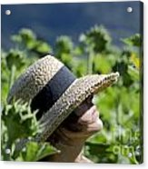 Woman With Straw Hat Acrylic Print