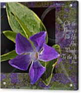 Wonderful Works Acrylic Print