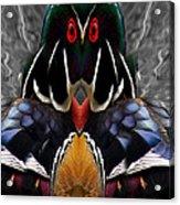 Wood Owl Acrylic Print