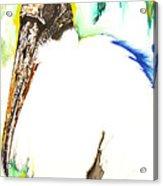 Wood Stork Acrylic Print by Anthony Burks Sr