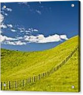 Wooden Fence Posts Running Through A Acrylic Print