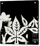 Wooden Leaf Shapes In Black And White Acrylic Print