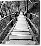 Wooden Stairs Acrylic Print by Falko Follert
