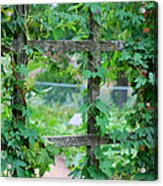 Wooden Trellis And Vines Acrylic Print by Nancy Mueller
