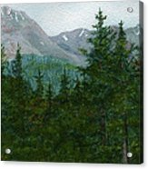 Woodland Overlook Acrylic Print by Vikki Wicks