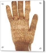 Woolen Glove Acrylic Print by Bernard Jaubert
