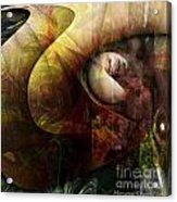 Worm Hole Acrylic Print by Monroe Snook