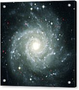 X-ray Sources In M74, Chandra Image Acrylic Print