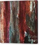 X Treme Texture Acrylic Print by Marsha Heiken
