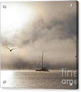 Yacht with gulls in mist Acrylic Print