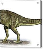 Yangchuanosaurus Shangiouensis Acrylic Print