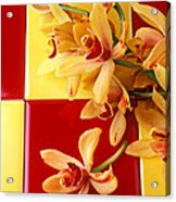 Yellow And Red Orchids  Acrylic Print