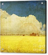 Yellow Field Acrylic Print