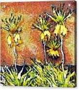 Yellow Flowers Acrylic Print by Odon Czintos