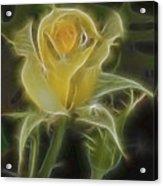 Yellow Fractalius Rose Acrylic Print