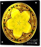 Yellow Lily Kaleidoscope Under Glass Acrylic Print