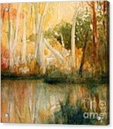 Yellow Medicine Creek 2 Acrylic Print