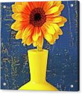 Yellow Mum In Yellow Vase Acrylic Print