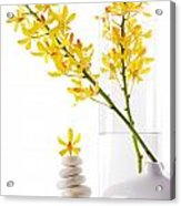 Yellow Orchid Bunchs Acrylic Print