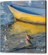 Yellow Panga Acrylic Print