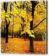 Yellow Park Acrylic Print