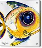 Yellow Study Fish Acrylic Print by J Vincent Scarpace