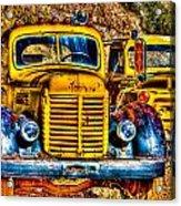 Yellow Trucks Acrylic Print
