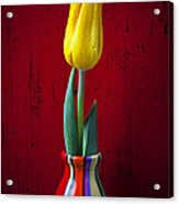Yellow Tulip In Colorfdul Vase Acrylic Print by Garry Gay