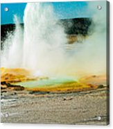Yellowstone Geysers Acrylic Print