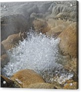 Yellowstone Hot Springs 9499 Acrylic Print
