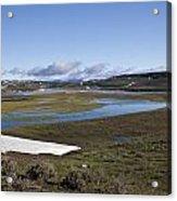 Yellowstone Plateau Acrylic Print