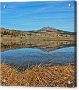 Yellowstone Reflections 9437 Acrylic Print