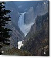 Yellowstone Splendour Acrylic Print