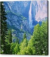 Yosemite Falls And Merced River Acrylic Print