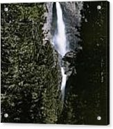 Yosemite Falls, Yosemite National Park Acrylic Print