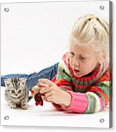 Young Girl With Silver Tabby Kitten Acrylic Print