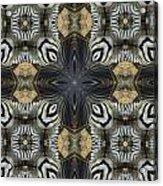 Zebra Cross II Acrylic Print