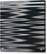 Zebra Waters Acrylic Print